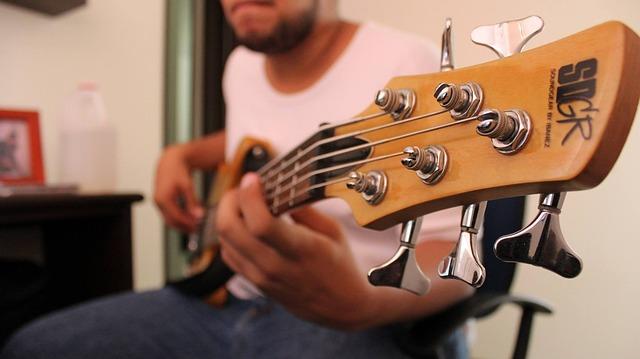 bass-1283554_640