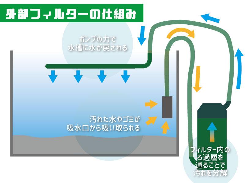 外部フィルターが水槽の水を循環させろ過する仕組みの解説