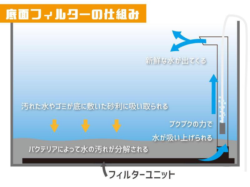 底面フィルターが水槽の水を循環させろ過する仕組みの解説